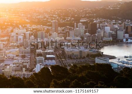 Wellington Central Business District #1175169157