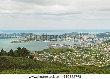 Wellington lookout