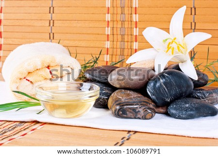 wellness spa treatments on the stones with oil