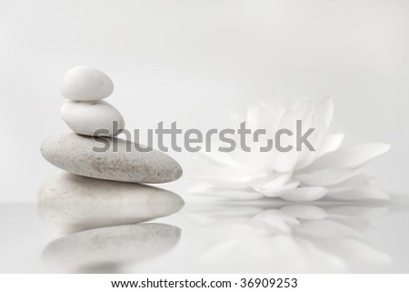 wellness still life pebbles and white lily, reflection in water,high key studio shot