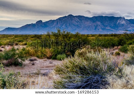 West Texas Landscape of Desert Area with Hills.