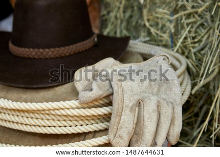 Western Cowboy hat with leather gloves, leather chaps and a roper's rope on hay with shallow depth of field