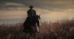 western cowboy portrait