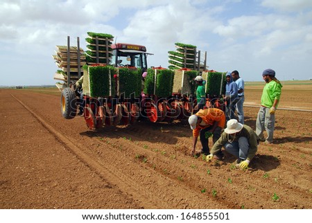 WESTERN NEGEV, ISR - MAR 26: Israeli farmers works the land on Mar 26 2008.The Negev covers more than half of Israel, over some 13,000 km�² (4,700 sq mi) or at least 55% of the country\'s land area.