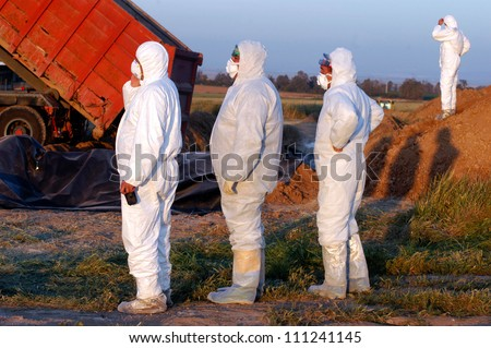 WESTERN NEGEV, ISRAEL - MARCH 18: Agriculture Ministry are burying the carcasses of dead turkeys due to Bird Flu outbreak at Kibbutz En Hashlosha in the western Negev, Israel on March 18, 2006.