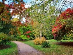 Westonbirt, The National Arboretum in October
