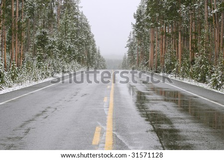 Wet asphalt road in Yellowstone National Park during a late spring snow storm.