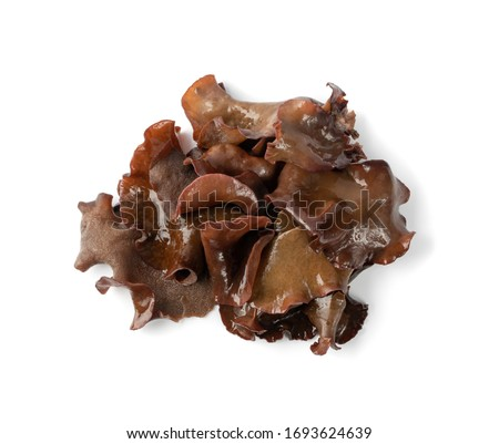 Wet black fungus, tree ear or wood ear mushroom isolated on white background top view. Soaked dry auricularia polytricha also known as cloud ear, black mushroom, jelly fungus or cloud ear fungus Сток-фото ©