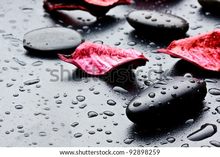 wet black stones and petal