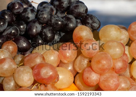 wet bunches of grapes in a pan