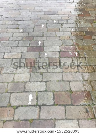Wet cobbled street with small white fishes embossed in the cobbles in rain