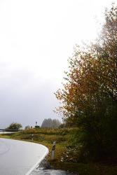 wet curvy road through the highlands of the Eifel in autumn