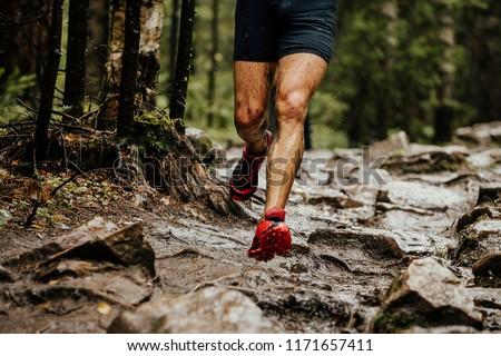 wet feet runner athlete running on trail stones in forest #1171657411