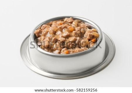 wet food for dogs and cats in silver bowl. #582159256