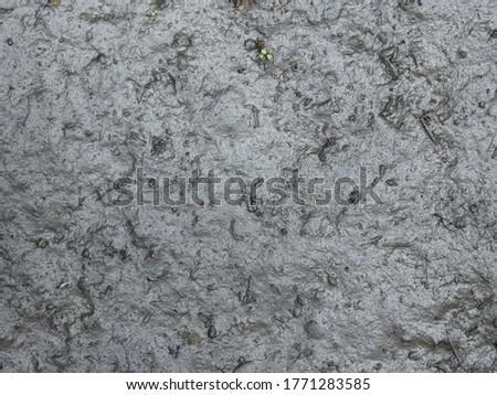 wet mud on the ground texture