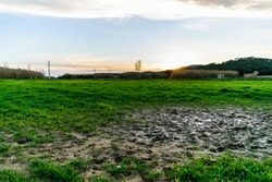 Wet mud puddle in field and sunset