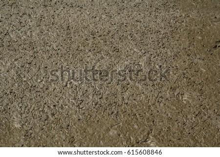 Wet Mud Texture #615608846