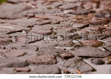 wet pavement #739121146