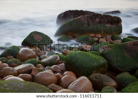 Wet pebbles on beach with blurred water