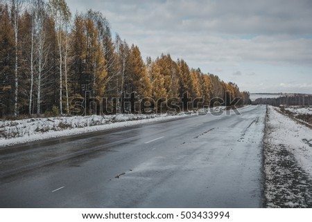 wet road in the forest #503433994