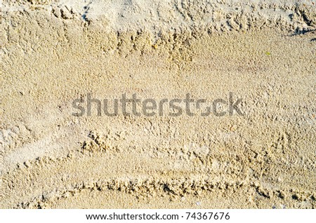 wet sand closeup as texture