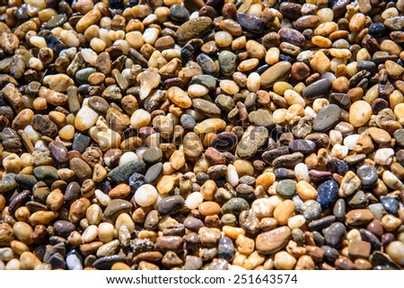 Wet shining pebbles background on floor at temple