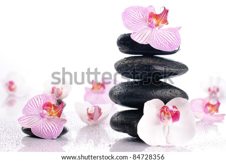 Wet spa stones with flowers on glossy white background