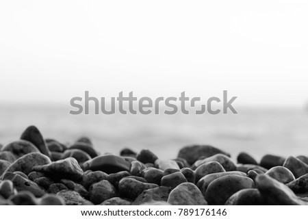 wet stones on the sea shore black and white photo