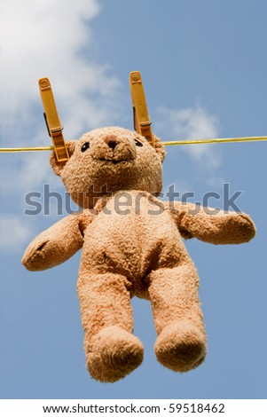 Wet teddy on a clothesline outdoors