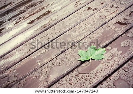 Wet wooden floor during rain with a fallen leaf, abstract background