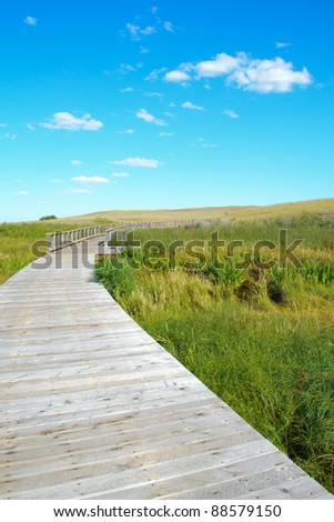 wetlands boardwalk in prairie lands