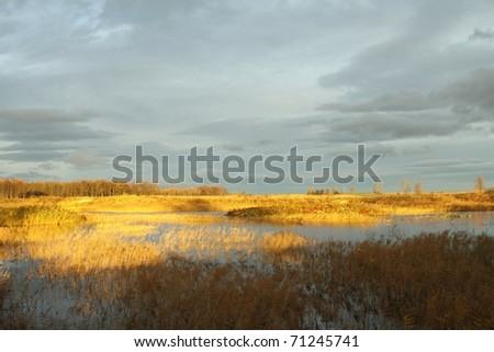 Wetlands in the autumn morning against the dark sky.