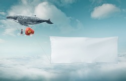 Whale floats in the sky with a happy sister  and carrying a blank white banner with a copy space area.