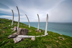 Whale ribs on the site of the abandoned old Eskimo settlement Naukan on the coast of the Bering Strait. The environs of Cape Dezhnev (the easternmost point of Eurasia). Chukotka, Far East of Russia.