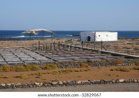 Whale skeleton and saline in Caleta de Fuste, Fuerteventura Spain