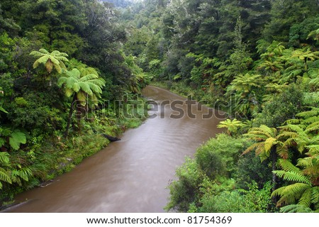 Whanganui river and national park on north island of New Zealand