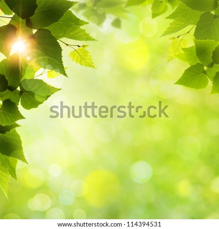Whats Funny Nice Day Abstract Natural Backgrounds Stock Photo