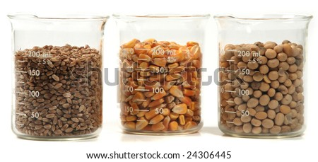 wheat, corn, soy seeds grain trio