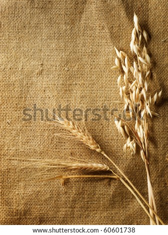 Wheat Ears on Burlap background.Country Style.With copy-space