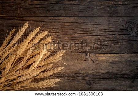 Wheat ears on rustic wooden background. #1081300103