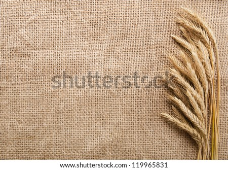 Wheat ears over burlap background with copy space