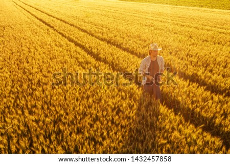 Wheat farmer with drone remote controller in field. Using modern innovative technology in agriculture and smart farming.