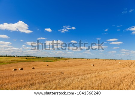 Wheat field after harvest with straw bales at sunset
