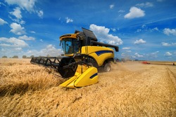 wheat field and combine harvester harvesting cereals, sky with beautiful clouds
