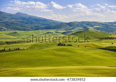 Wheat field and countryside scenery in Tuscany, Landscape of beautiful Italian nature, Italy field country
