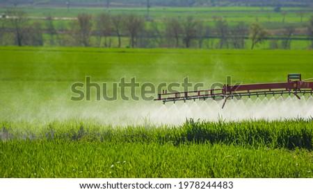 Wheat field irrigation and spraying, large wheat field green harvest in Gaziantep, Turkey Stok fotoğraf ©