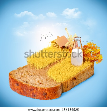 Wheat field on the bread