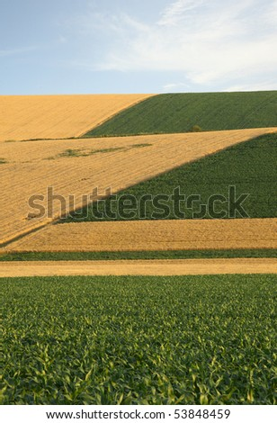 stock-photo-wheat-field-with-blue-sky-53848459.jpg
