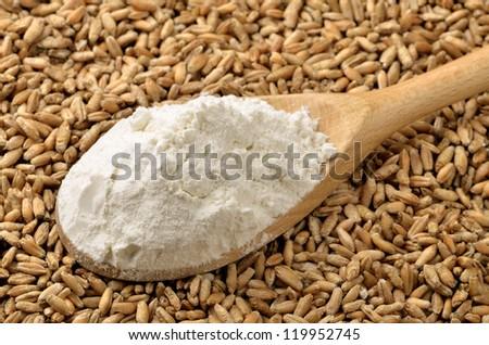 Wheat flour on grains background
