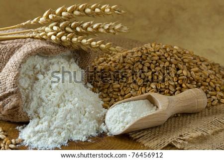 Wheat grain and flour in small burlap bag - stock photo
